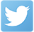 Twitter Icon Homepage